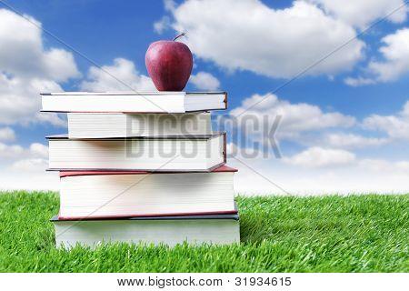 Sommer Lesung