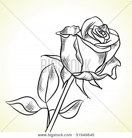 Silhouette of the black rose on a white background.