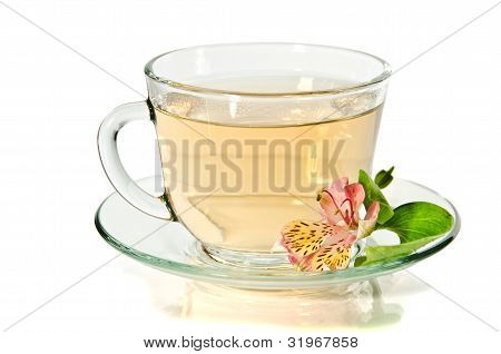 Glass Cup Of Tea On The White Background