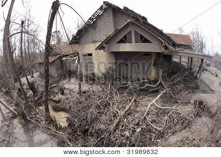 House And Trees Damaged from Mount Merapi Eruption
