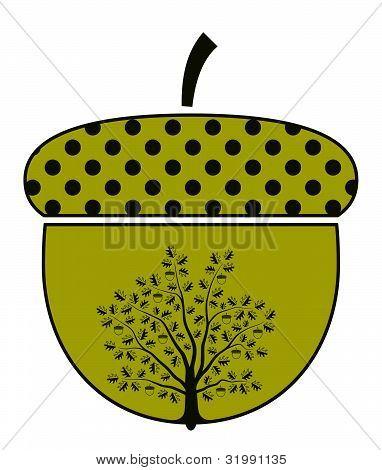 Oak Tree In Acorn