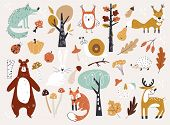 Cute Autumn Woodland Animals And Floral Forest Design Elements. Set Of Cute Autumn Cartoon Character poster