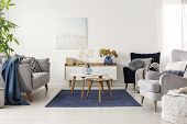 Elegant White, Grey And Blue Living Room Interior With Scandinavian Sofa And Velvet Armchair poster