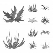 Isolated Object Of Foliage And Floral Icon. Collection Of Foliage And Summer Stock Symbol For Web. poster