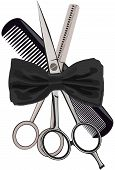 Barber Equipment Scissors Comb And Weigh Scissors poster