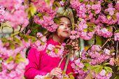 Girl Enjoying Floral Aroma. Pollen Allergy Concept. Kid Enjoy Cherry Blossom Sakura. Kid On Pink Flo poster