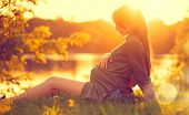 Pregnant Woman sitting on green grass, looking on river on sunset, touching her Belly and dreaming.  poster