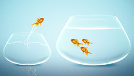 stock photo of fishbowl  - goldfish jumping out from small fishbowl to bigger fishbowl  - JPG