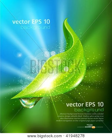 vector abstract background of green leaf and a drop of dew