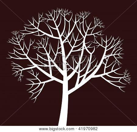 weitverzweigt Baum
