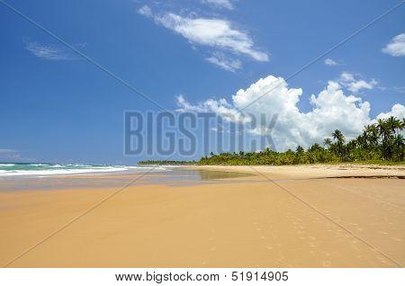 Brazil, Taipu De Fora, Beach