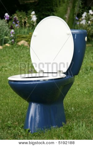 Toilet In The Garden