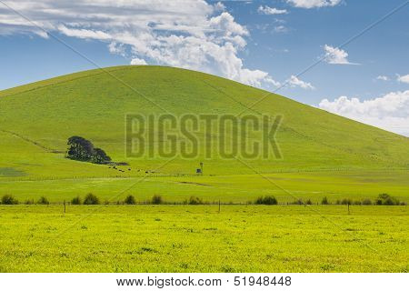 Victorian Landscape In Spring