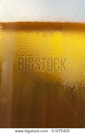 Fresh Golden Draft Beer Detail