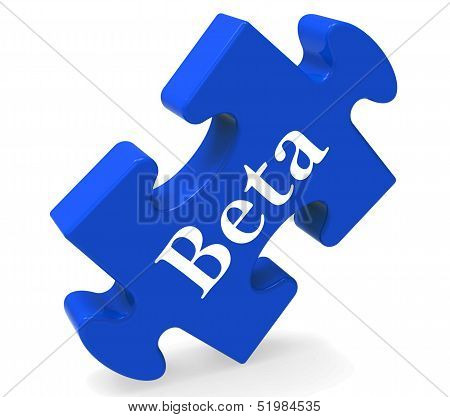 Beta Puzzle Shows Demo Software Or Development