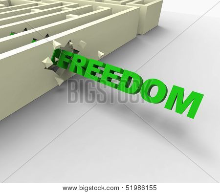Freedom From Maze Shows Liberated