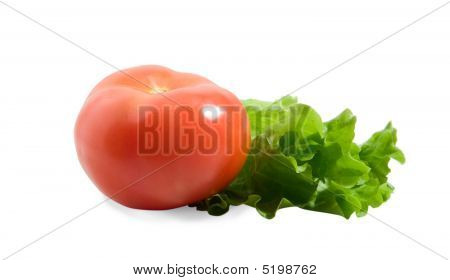 Red Tomato And Green Butter Lettice