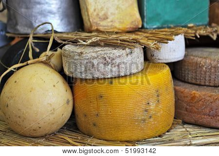 Different types of mature cheese on the stand on International Cheese Festival in Bra, Northern Italy.