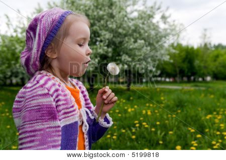 The Girl And A Dandelion