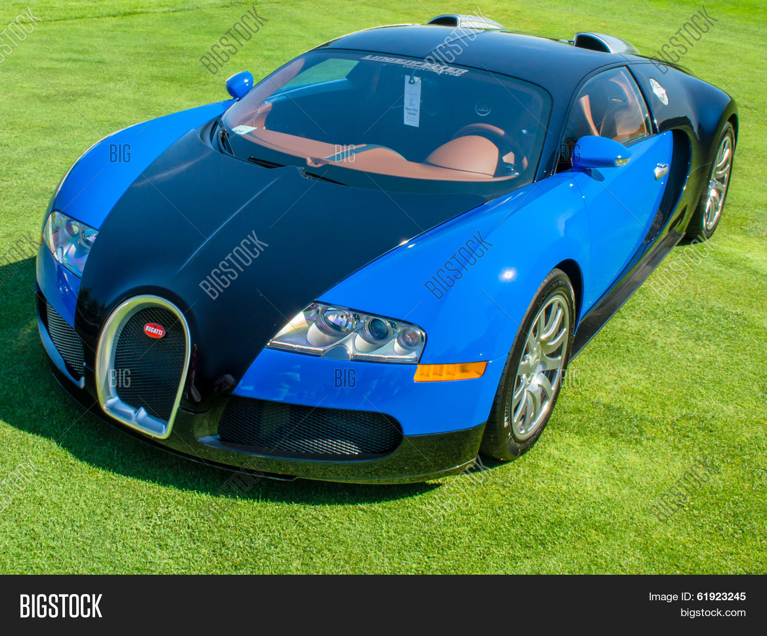 2007 bugatti veyron image photo bigstock. Black Bedroom Furniture Sets. Home Design Ideas