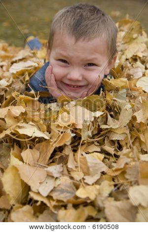 Boy Laying In Leaves