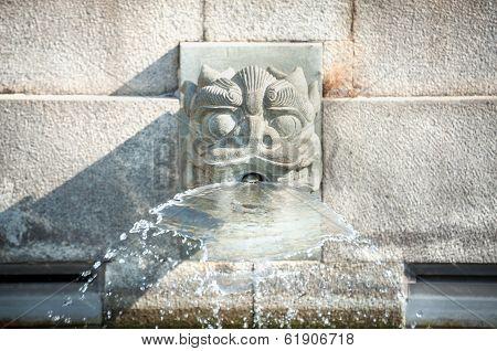 Dragon Head Water Fountain At Chi Lin Nunnery, Hong Kong