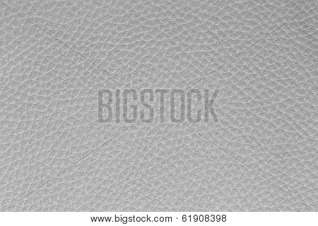 Background from white leather