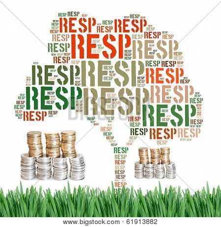 Canadian Registered Education Savings Plans Concept Word Cloud