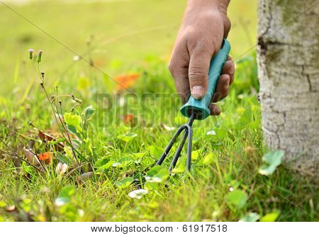 using a gardening tool in the garden