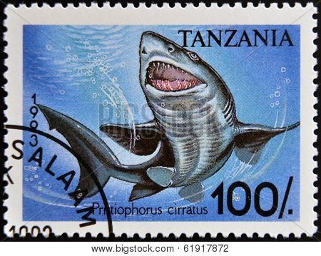 Stamp printed in Tanzania shows longnose sawshark Pristiophorus cirratus