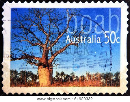 AUSTRALIA - CIRCA 2005: stamp printed in Australia shows boab circa 2005
