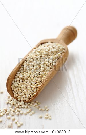 Scoop With Uncooked Quinoa Seed Grain On White Wooden Background