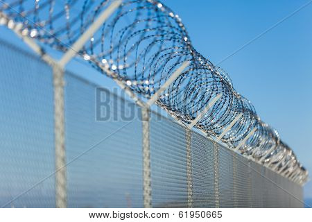 Coiled Razor Wire On Top Of A Fence