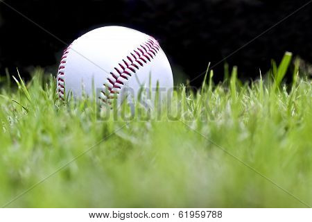 Baseball On The Green Grass