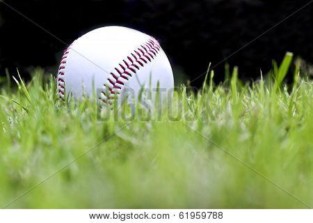 Baseball On The Green Grass