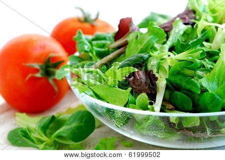 Fresh baby greens salad and tomatoes close up