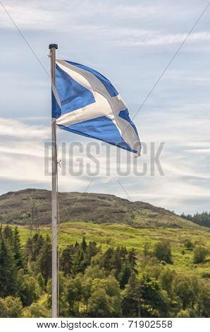 Scotland Decides