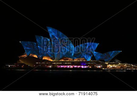 Sydney Opera House Night Vivid Light Festival