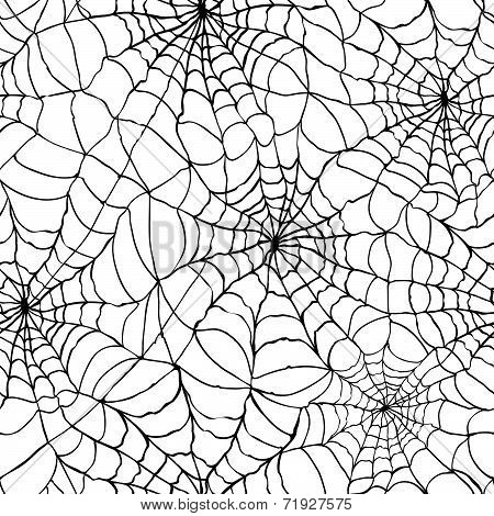 Spider Web Texture Background
