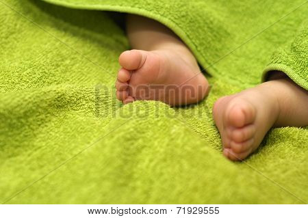 Baby feet under blanket