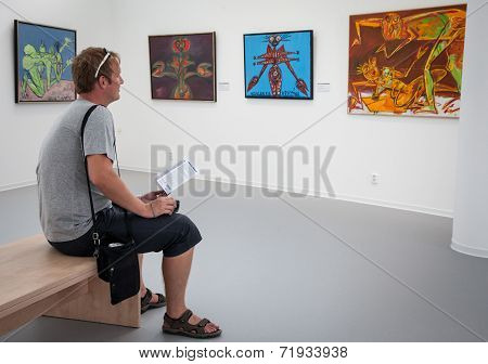 Man Looking At The Painting In Gallery Danubiana, Bratislava