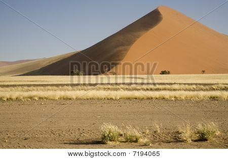 Big Dune