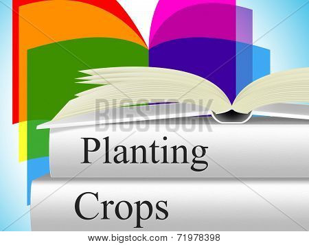 Planting Crops Indicates Agrarian Cultivation And Field