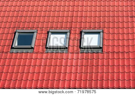 Roof Tile With Skylights