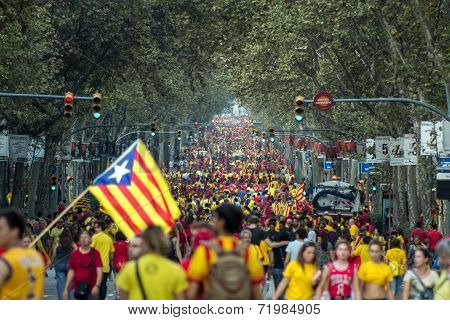 People Manifesting Ingependence On The Strret Of Barcelona