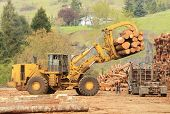 foto of lift truck  - A large wheeled front end log loader unloading a log truck at a log yard at a lumber processing mill that specializes in small logs - JPG