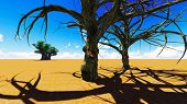 stock photo of baobab  - African village With the baobabs - JPG