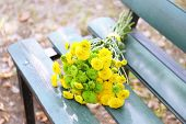 stock photo of chrysanthemum  - Beautiful bouquet of chrysanthemums flowers on wooden bench in park  - JPG