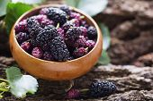 picture of mulberry  - Mulberry in bowl on wooden background - JPG