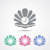 picture of oyster shell  - Vector shell icon with a pearl inside in different colors - JPG